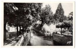 CP, 17, SAUJON, Vue D'un Pont Sur La Sauldre, Dans La Sauldre, Dans La Rue Carnot , Vierge, Ed : ARTAUD Et Fils - Saujon