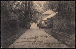 Le Roeulx - Orangerie Dans Le Parc - Rare - Le Roeulx