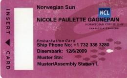 CARTE D'EMBARQUEMENT BATEAU Norwegian Cruise Line  NORVEGE - Billets D'embarquement De Bateau
