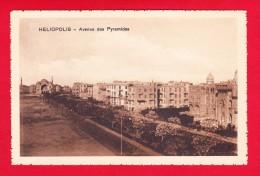 E-Egypte-112P17 HELIOPOLIS, Quartier Du Caire, Avenue Des Pyramides, Cpa BE - Cairo