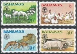 Bahamas. 1981 World Food Day. MNH Complete Set SG 598-601 - Bahamas (1973-...)