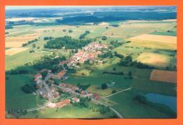 """Dpt  52  Savigny  """"  Vue Generale - Fayl La Foret  """"  Cpm GF - Autres Communes"""