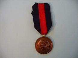 Médaille Belge  Des Anciens Combattants 1940 1945 - Medaglie