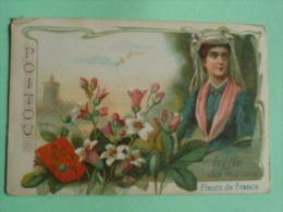 CHROMO - POITOU, Fleurs De FRANCE - TREFLE DES MARAIS - Trade Cards
