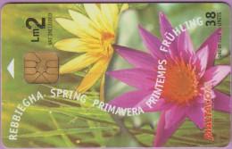 Malte  179  :-.   Rebbiegha Spring  Primavera  -°-  Iz  Zebbug  Gozo  ***   LUXE - Malte