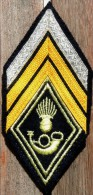 Losange Modèle 45 De Caporal Chef Des Chasseurs. - Patches