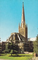 Cathedral,Norwich, Norfolk ,S17. - Angleterre