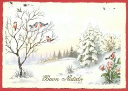 CARTOLINA VG ITALIA - BUON NATALE - Paesaggio Con Pettirossi - Kartos - 10 X 15 - ANNULLO TARGHETTA TORINO 1968 - Natale
