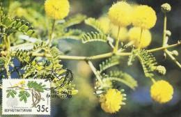 Bophuthatswana 1992 Flowers Maximum Card - Bophuthatswana