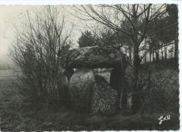 CPSM - Le Livradois - Ambert - Menhir Ou Dolmen De Boissière (coté Sud-ouest) à 5km D´Ambert - Ambert
