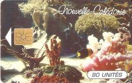 TARJETA DE NUEVA CALEDONIA DE 80 UNITES DE CORALES TIRADA 35000 - Nuova Caledonia