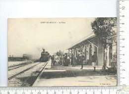 MAILLY-LE-CAMP: La Gare , Arrivée Train Vapeur - Mailly-le-Camp
