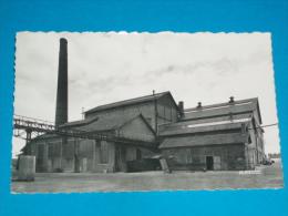 80) Roisel N° 13 - La Sucrerie ( Carte Photo )   -  Année1966  - EDIT- La Cigogne - Roisel
