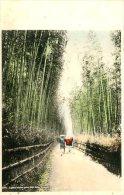 JAPAN - KYOTO - GOJIO ZAKA - A GREAT BAMBOO GROVE - Kyoto