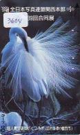 Telecarte Japon OISEAU (3604)    BIRD * JAPAN Phonecard * Vogel TELEFONKARTE - Songbirds & Tree Dwellers