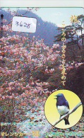 Carte Prépayée Japon* OISEAU (3628)   BIRD * JAPAN Prepaidcard * Vogel KARTE - Birds