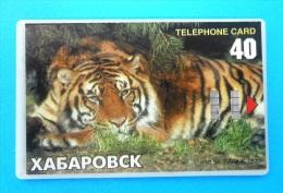 TIGER ... KHABAROVSK  ( Russia - Old Chip & Plastic Card ) * Russie * Tigar Tigre Animal Wild Animals Fauna Faune - Russia