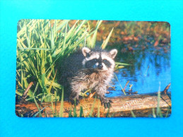 KIROV  - 150 Ed.  ( Russia Old Chip Card)  * Russie Fauna Faune Animals Animal Animaux - Russia