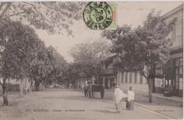 AFRIQUE,AFRICA,SENEGAL EN 1906,époque Coloniale Française,avec Timbre,DAKAR,attelage,bou Levard  Du Passé - Sénégal