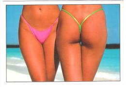 PIN UP - Femme - Nude Girl - Woman - Frau - Erotic - Erotik - Pin-Ups