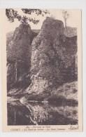 CUSSET - N° 589 - LES BORDS DU SICHON - LES DEUX JUMEAUX - France