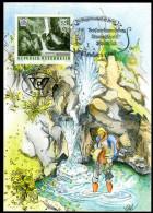 ÖSTERREICH 1986 - Naturschönheiten / Tschaukofall In Kärnten - Maxikarte MC - Sonstige