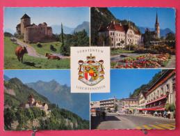 Carte Pas Très Courante - Liechtenstein - Vaduz - Landesfürstliche Residenz - Scans Recto-verso - Liechtenstein
