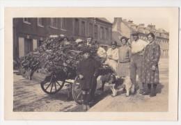 Cpa Carte Photo Environs De Ou  CHATEAU DU LOIR Famille à La Pose Charrette De Choux Fleurs - France