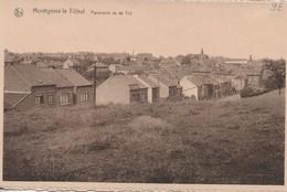 Montignies-le-Tilleul.Panorama Sur Le Try. - Montigny-le-Tilleul
