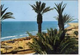 Costa CANARIA - Playa Del Ingles, Las Palmas De Gran Canaria,   Christmas Stamp - Gran Canaria