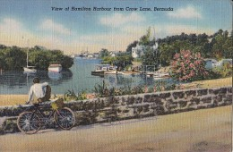 3479- HAMILTON HARBOUR, SHIP, BIKE, POSTCARD - Bermudes