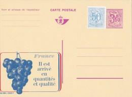 A27 - 22560 - Entier Postal - Carte Publibel N° 2560 F - France Raisin Vin - Voir Photo Pour Détails - Enteros Postales