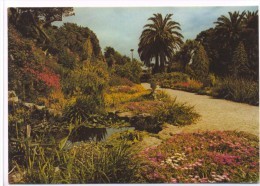 The Garden At Tresco Isles Of Scilly - Scilly Isles