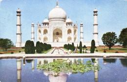 Tai Mahal Agra - India