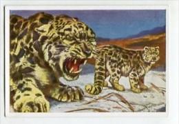 SB8557 Sammelwerk Nr. 3 - Wunder Der Tierwelt - Bild Nr.129 Irbis Oder Schneeleopard - Otros