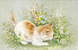 013O- Illustration Cat Chat Kat Publ. Red Farm Studio Pawtucket RI - Katzen