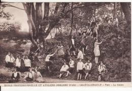 CHATELLERAULT (Vienne) Ecole Professionnelle Et Ateliers Jeanne D´Arc - Parc Et Le Cèdre -VOIR 2 SCANS - - Chatellerault