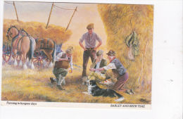 FARMING IN BYGONE DAYS - BARLEY AND BEER TIME - Farms