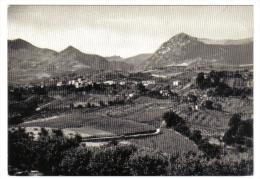Mergo Panorama  NON VIAGGIATA  CODICE C.1847 - Italia