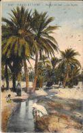 [DC5577] CARTOLINA - ALGERIA - SCENES ET TYPES - PAYSAGE DU SUD - LA SEGUIA - Viaggiata 1921 - Old Postcard - Algeria