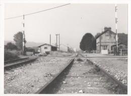 Photographie - Photo - SNCF - Gd Format 18x24 - Gare De COLLEVILLE - Passage à Niveau - Plaatsen