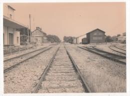 Photographie - Photo - SNCF - Gd Format 18x24 - Gare  De LUNERAY - Treinen