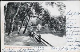 AK/CP Wismar  Lindengarten    Gel./circ.   1902        Erhaltung/Cond.   2      Nr. 7836 - Wismar