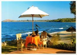 Malawi - 2014 Lake Malawi Definitive Potscard Mint - Malawi