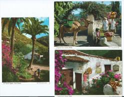 Espagne - Islas Canarias ÎLES CANARIES  - Lot De 2 Cpm Voir Scan R/V  Des 2 Cartes- *PRIX FIXE - Espagne