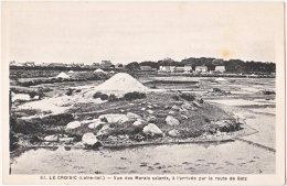 44. LE CROISIC. Vue Des Marais Salants, à L'arrivée Par La Route De Batz. 97 - Le Croisic