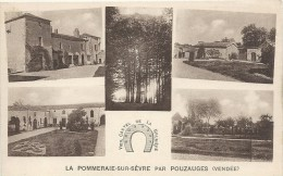LA POMMERAIE SUR SEVRE. PAR POUZAUGES - France