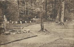 Rossignol - Intérieur Du Cimetière Nord, Morts Coloniaux - 1924 ( Voir Verso ) - Tintigny