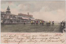 AK - L Hippodrome Wllington  - Avant Le Depart - Pferderennbahn 1907 - Oostende
