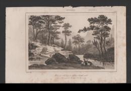 Danvin 1830ys Rare AUSTRALIA Antique Print GLEN BROOK CRECK New South Wales Z1 - Australie